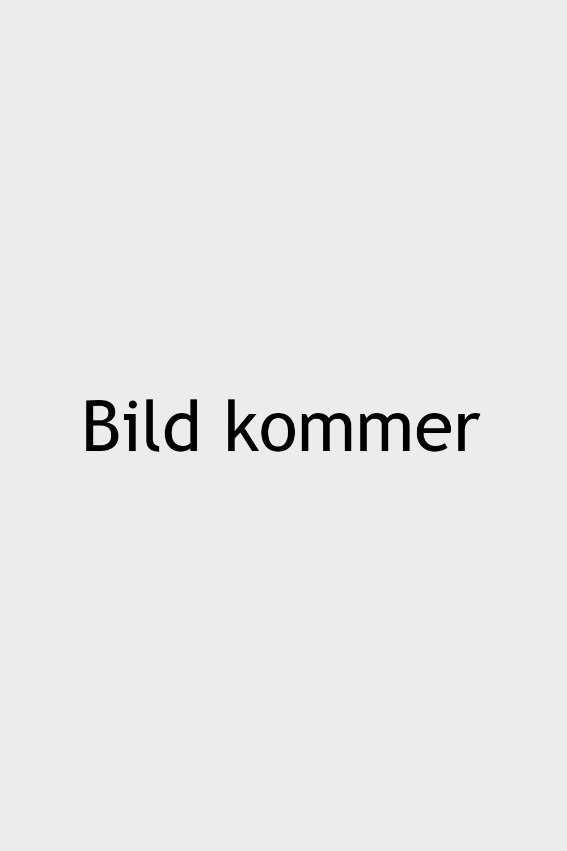 Dag Edström
